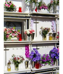 Flower Arrangement niche