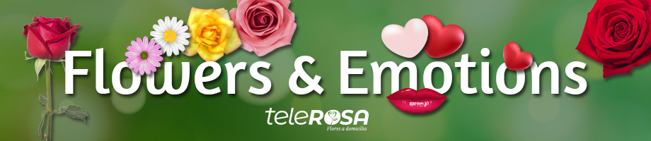 Catalog of flowers and roses in Lucena
